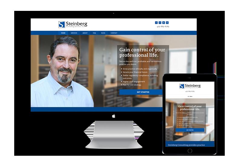 Steinberg Website Design